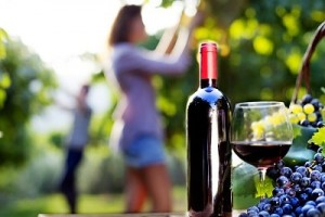 Oral health benefits of red wine for patients in Gainesville, FL